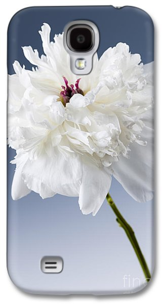 Studio Photographs Galaxy S4 Cases - White peony flower Galaxy S4 Case by Elena Elisseeva
