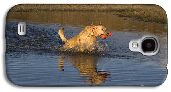Water Retrieve Galaxy S4 Cases - Yellow Labrador Galaxy S4 Case by Linda Freshwaters Arndt