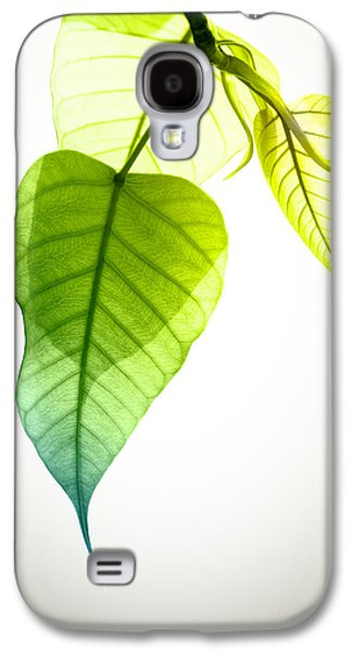 Abstract Nature Galaxy S4 Cases - Pho Or Bodhi Galaxy S4 Case by Atiketta Sangasaeng