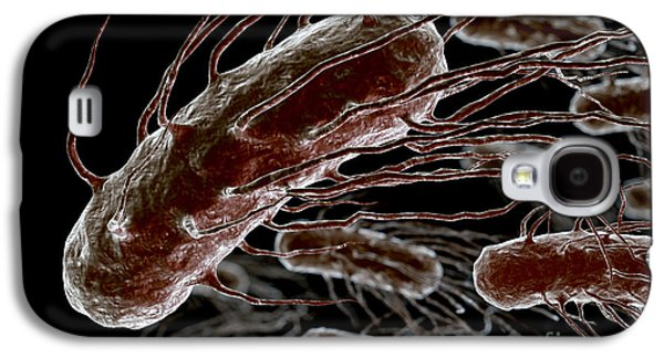 Pathogenic Galaxy S4 Cases - Helicobacter Pylori Galaxy S4 Case by Science Picture Co