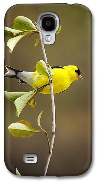 American Goldfinch Galaxy S4 Case by Christina Rollo