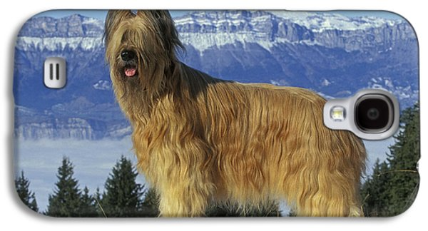 Dogs In Snow. Galaxy S4 Cases - Briard Dog Galaxy S4 Case by Jean-Michel Labat
