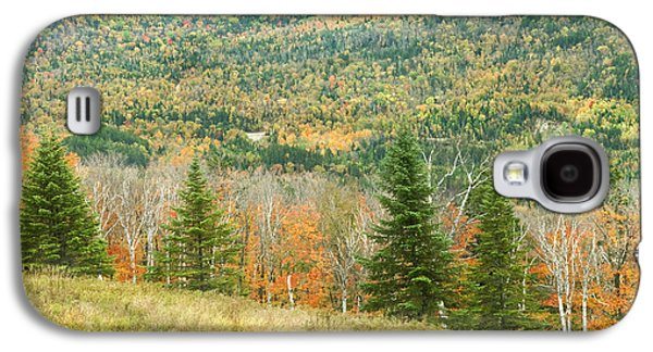 Autumn Landscape Galaxy S4 Cases - Colorful Fall Forest Near Rangeley Maine Galaxy S4 Case by Keith Webber Jr