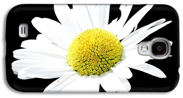Garden Scene Mixed Media Galaxy S4 Cases - Daisy flowers  Galaxy S4 Case by Toppart Sweden