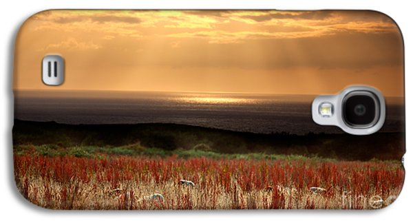Sun Photographs Galaxy S4 Cases - Evening at the Sea Galaxy S4 Case by Nailia Schwarz