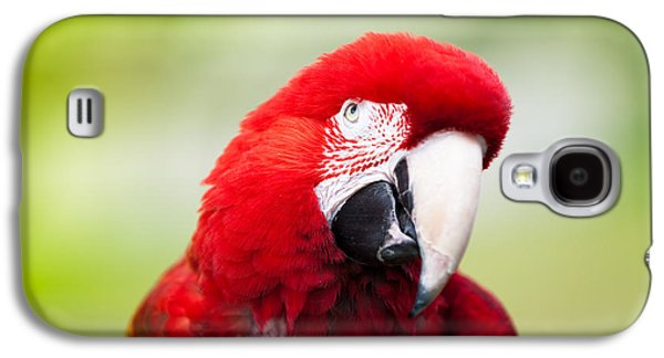 Pet Galaxy S4 Cases - Parrot Galaxy S4 Case by Sebastian Musial