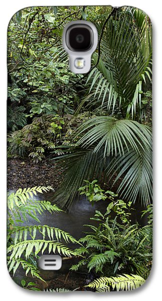 Tropics Galaxy S4 Cases - Tropical forest Galaxy S4 Case by Les Cunliffe