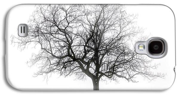 Snow Scene Landscape Galaxy S4 Cases - Winter tree in fog Galaxy S4 Case by Elena Elisseeva