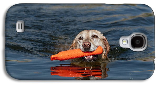 Water Retrieve Galaxy S4 Cases - Yellow Labrador Retriever, Retrieving Galaxy S4 Case by William H. Mullins