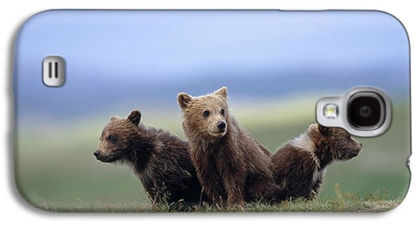 4 Young Brown Bear Cubs Huddled Galaxy S4 Case by Eberhard Brunner