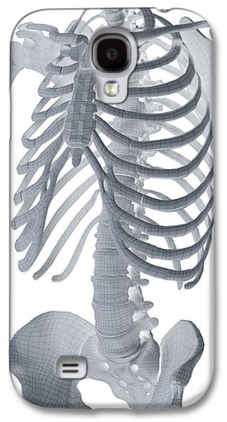 Digital Galaxy S4 Cases - Bones Of The Torso Galaxy S4 Case by Science Picture Co