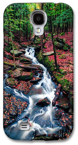 Landscape Photographs Galaxy S4 Cases - Chesterfield Gorge New Hampshire Galaxy S4 Case by Edward Fielding