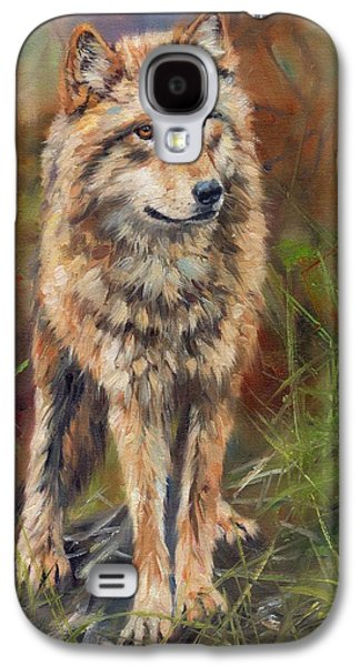Grey Wolf Galaxy S4 Case by David Stribbling