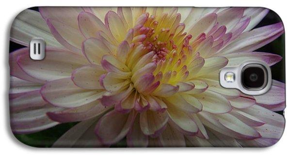 Bloosom Galaxy S4 Cases - 50 Shades of Indigo Galaxy S4 Case by Lingfai Leung