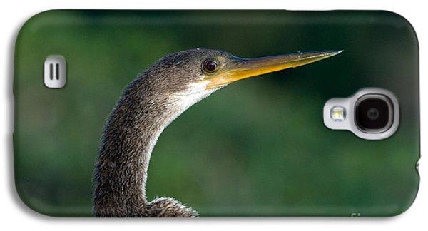 Anhinga Galaxy S4 Case by Mark Newman