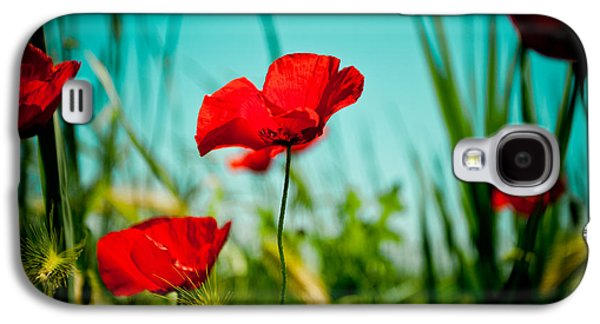 Greeting Cards Pyrography Galaxy S4 Cases - Poppy field and sky Galaxy S4 Case by Raimond Klavins