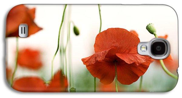 Botanical Galaxy S4 Cases - Red Poppy Flowers Galaxy S4 Case by Nailia Schwarz