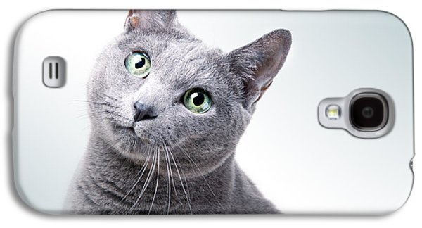 Gray Hair Galaxy S4 Cases - Russian Blue Cat Galaxy S4 Case by Nailia Schwarz