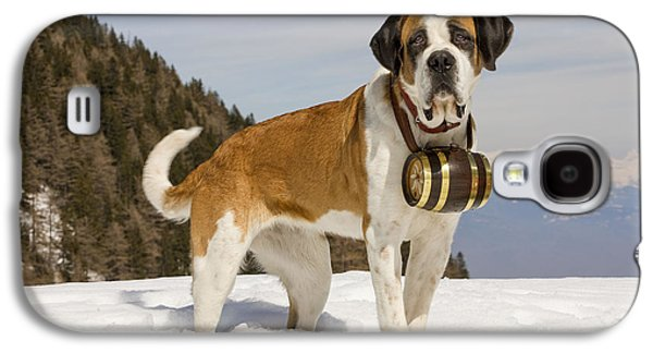 Dog In Landscape Galaxy S4 Cases - Saint Bernard Galaxy S4 Case by Jean-Michel Labat