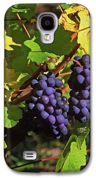Usa, Oregon, Willamette Valley Galaxy S4 Case by Jaynes Gallery