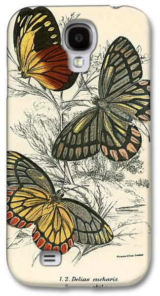 Flies Galaxy S4 Cases - Butterflies Galaxy S4 Case by English School