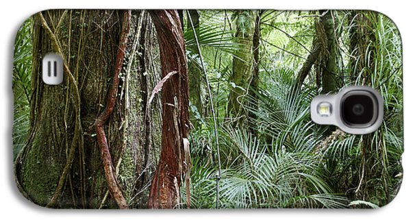 Woodlands Scene Galaxy S4 Cases - Jungle Galaxy S4 Case by Les Cunliffe