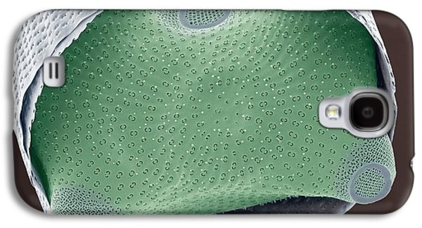 Plankton Galaxy S4 Cases - Diatom Shell, Sem Galaxy S4 Case by Steve Gschmeissner