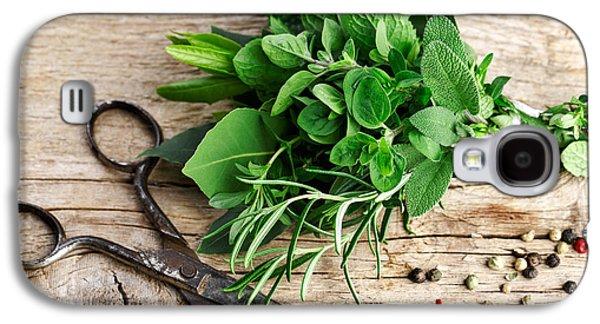 Fresh Green Galaxy S4 Cases - Kitchen Herbs Galaxy S4 Case by Nailia Schwarz