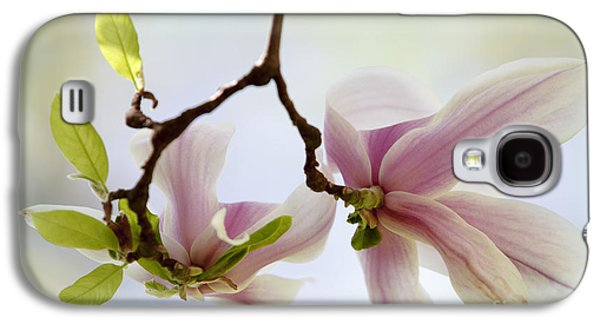 Botanical Galaxy S4 Cases - Magnolia Flowers Galaxy S4 Case by Nailia Schwarz