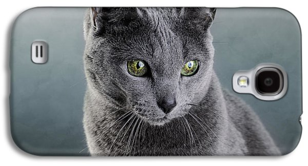Furry Galaxy S4 Cases - Russian Blue Cat Galaxy S4 Case by Nailia Schwarz