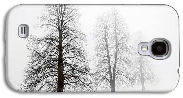Snow Scene Landscape Galaxy S4 Cases - Winter trees in fog Galaxy S4 Case by Elena Elisseeva