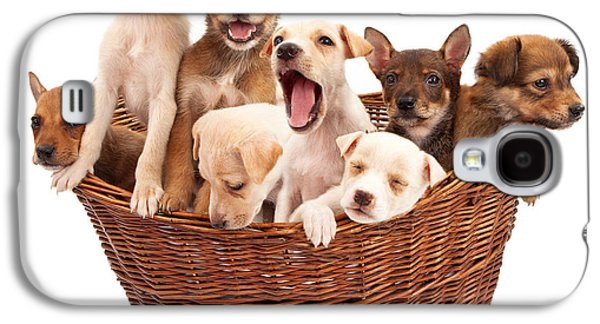 A Basket Of Puppies  Galaxy S4 Case by Susan  Schmitz