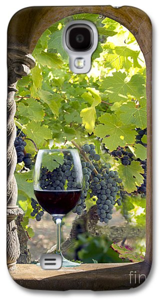 Wine Grapes Galaxy S4 Cases - A Beautiful Day at the Vineyard Galaxy S4 Case by Jon Neidert