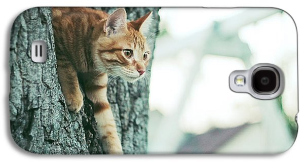 Cats Pyrography Galaxy S4 Cases - A Cats View Galaxy S4 Case by Cherisha Norman
