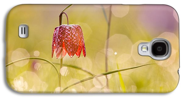 Meleagris Galaxy S4 Cases - A Fairies Place II _Snakes head fritillary Galaxy S4 Case by Roeselien Raimond