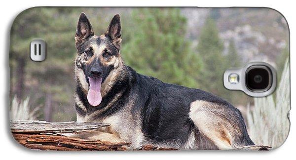 A German Shepherd Lying On A Fallen Galaxy S4 Case by Zandria Muench Beraldo