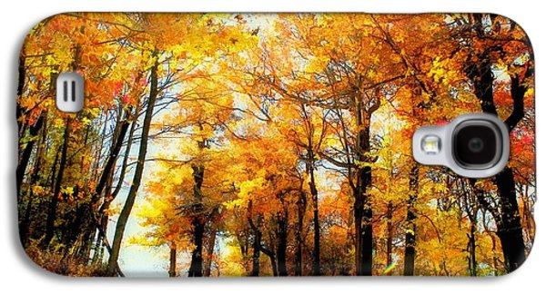 Autumn Landscape Galaxy S4 Cases - A Golden Day Galaxy S4 Case by Lois Bryan