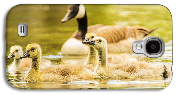 Geese Digital Art Galaxy S4 Cases - A Goosey Family Affair Galaxy S4 Case by Bill Tiepelman