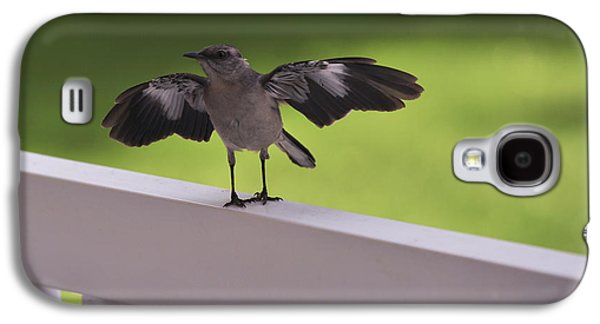 A Little Visitor Northern Mockingbird Galaxy S4 Case by Terry DeLuco