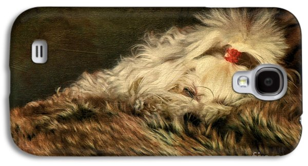 Sleeping Dog Galaxy S4 Cases - A Long Winters Nap Galaxy S4 Case by Lois Bryan