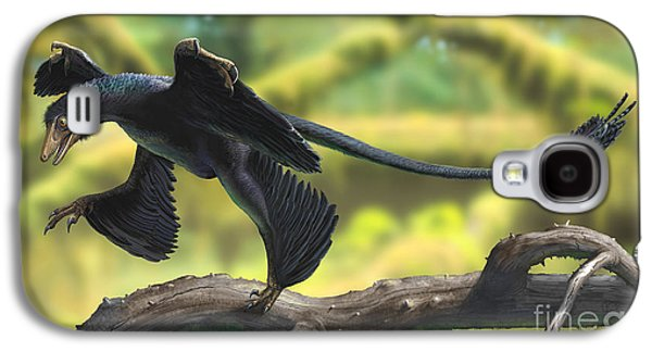 Concentration Digital Galaxy S4 Cases - A Microraptor Perched On A Tree Branch Galaxy S4 Case by Sergey Krasovskiy