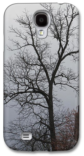 Mystic Setting Galaxy S4 Cases - A mysterious tree on a foggy day Galaxy S4 Case by A J