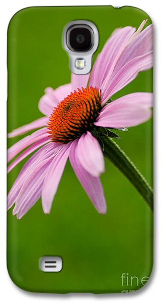 Bloosom Galaxy S4 Cases - A Natural Beauty Galaxy S4 Case by Nick  Boren