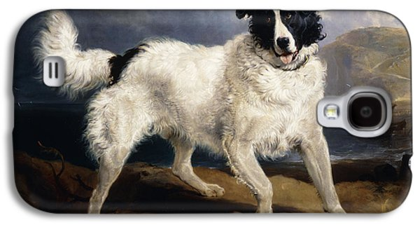 Dog Close-up Paintings Galaxy S4 Cases - A Portrait of Neptune Galaxy S4 Case by Sir Edwin Landseer