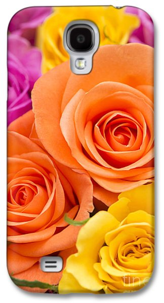 Rosaceae Galaxy S4 Cases - A Riot of Roses Galaxy S4 Case by Anne Gilbert