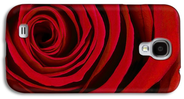 A Rose For Valentine's Day Galaxy S4 Case by Adam Romanowicz