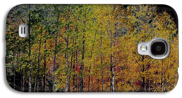 Surreal Landscape Digital Art Galaxy S4 Cases - A Stand of Birch Trees in Autumn Galaxy S4 Case by David Patterson
