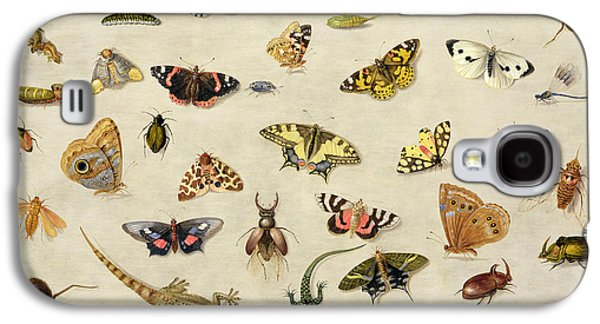 Collection Galaxy S4 Cases - A Study of insects Galaxy S4 Case by Jan Van Kessel