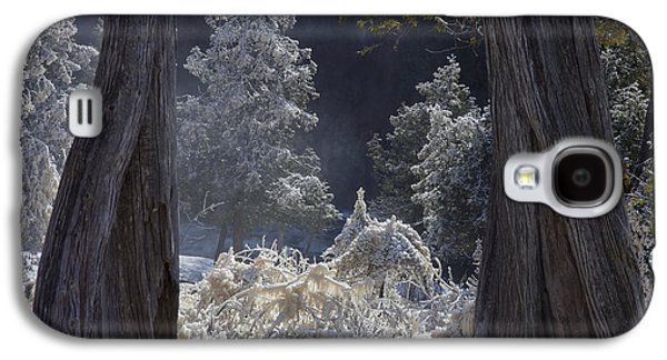 Mary Amerman Galaxy S4 Cases - A Twisted Fairy Tale Galaxy S4 Case by Mary Amerman