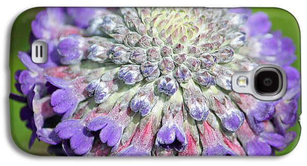Fibonacci Galaxy S4 Cases - A Whatsis Squared Galaxy S4 Case by Suzanne Gaff